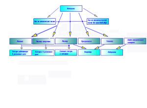 Иерархия на производстве