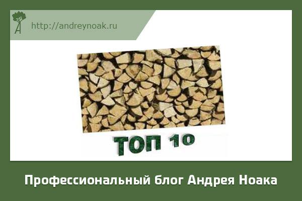ТОП 10 самых плотных деревьев