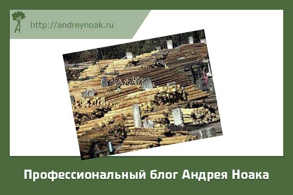 Хранение леса