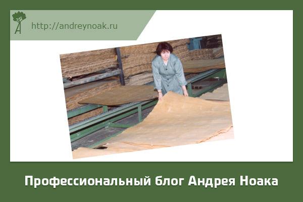Изготовление фанеры
