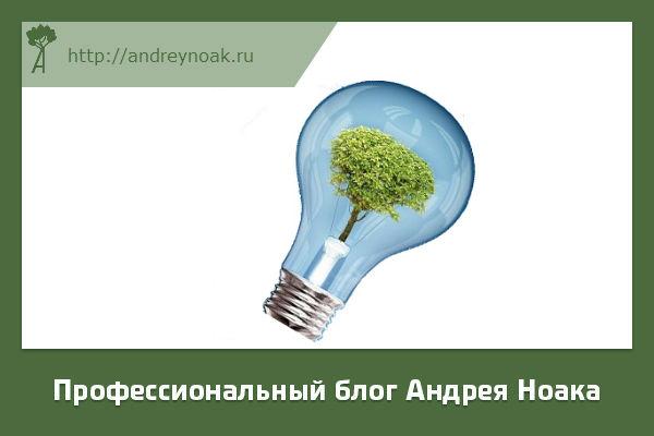 Обязанности энергетика