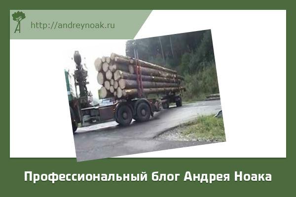 Транспортировка длинного леса