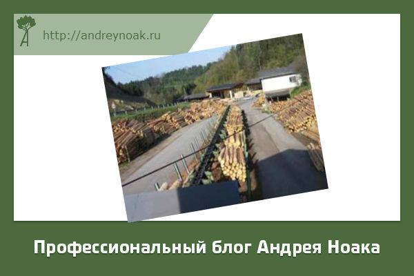 Сортировка круглого леса